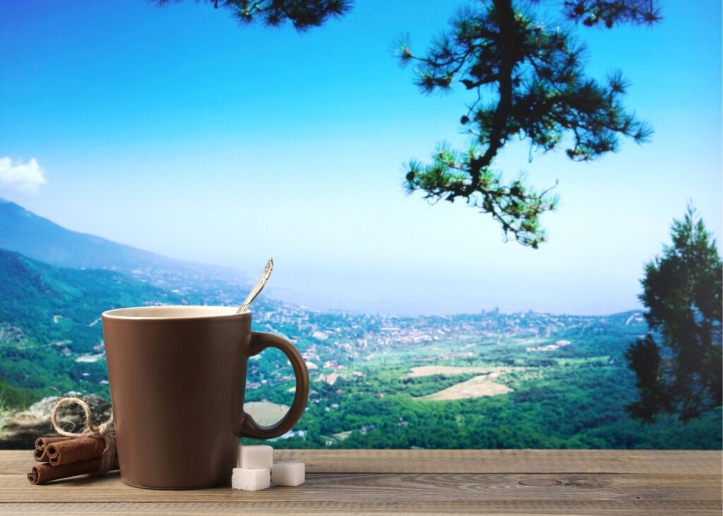 green mountain coffee reviews